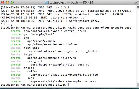 Rails Basics Professional Programmer